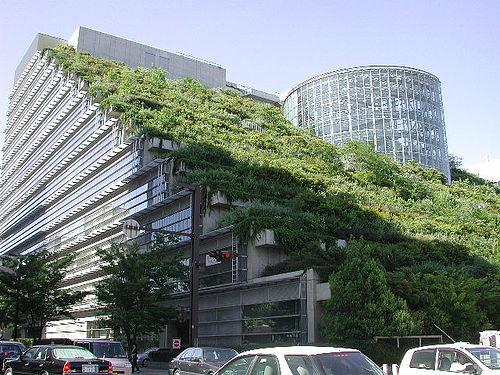 Yeşil ofis uygulamaları hızla yaygınlaşıyor
